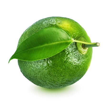 Whole lime with leaf isolated on white background. Imagens