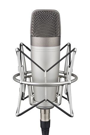 Gray studio condenser microphone in shock mount isolated on white background