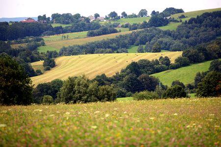 farmhouses: Country landscape