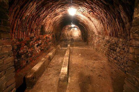 Shot of a wine cellar. photo