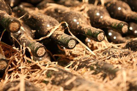 sehr alten Flaschen im Weinkeller  Standard-Bild