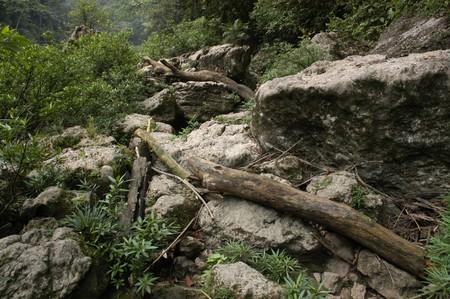 Waterfall Agua Azul Mexico photo