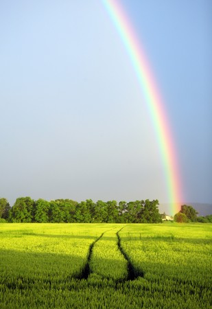 Rainbow on  blue sky over the rural landscape Banque d'images