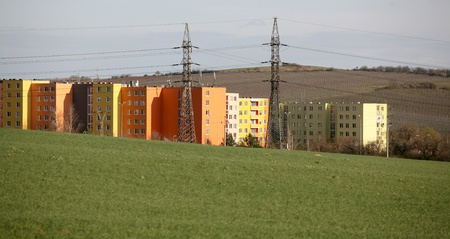 Coulred prefab houses with many windows hidden by the green field