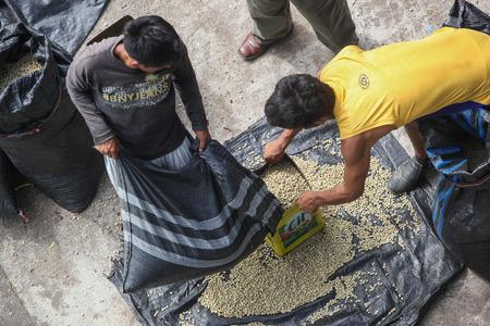 cooperativismo: Tingo María, PERÚ - 22 de junio: El secado de los granos de café en el patio del cooperativa Naranjillo en Tingo María, Perú 2011