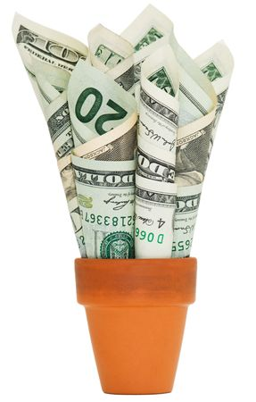 Rolled up American money stuffed into a terra cotta pot. photo