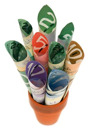 canadian cash: Rolled up Canadian cash in a terra cotta pot.