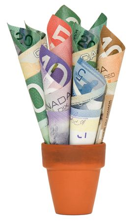 canadian currency: Rolled up Canadian cash in a terra cotta pot.