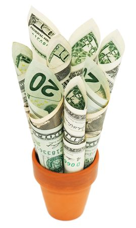 terra: Rolled up American money stuffed into a terra cotta pot.