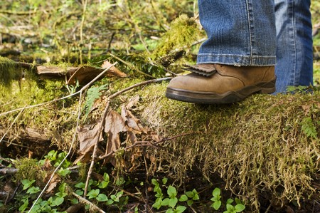 stepping: Stepping on a downed log in a forest setting