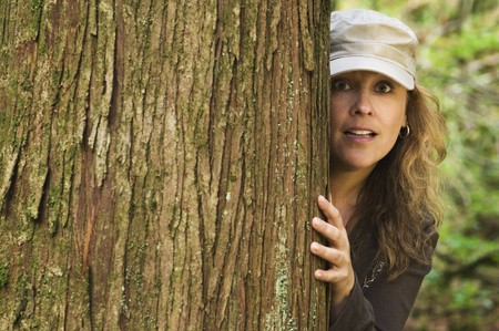hides: Woman hides behind a cedar tree trunk in the forest, peering around the side of it.