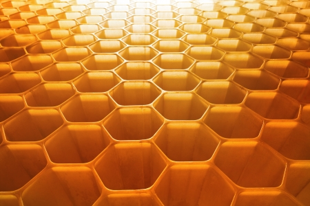 honeycomb: honeycomb as the perfect backdrop Stock Photo