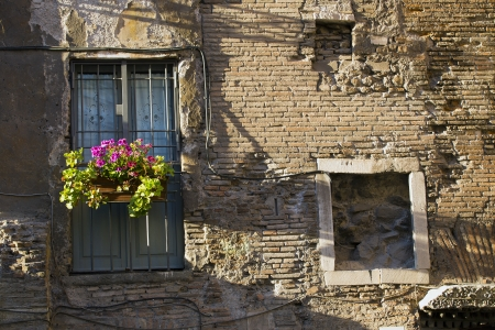 flowers windov at Italy Rome photo