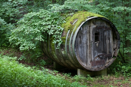 concealed: very rare like Dionysus residential barrel old in a wild forest