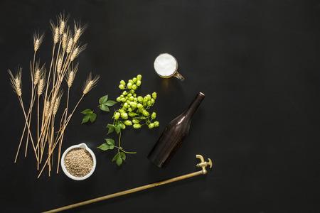 groene verse hop op de zwarte achtergrond, met bier en gerst Stockfoto