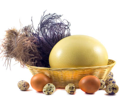 medium size: Large Ostrich eggs in a basket Stock Photo
