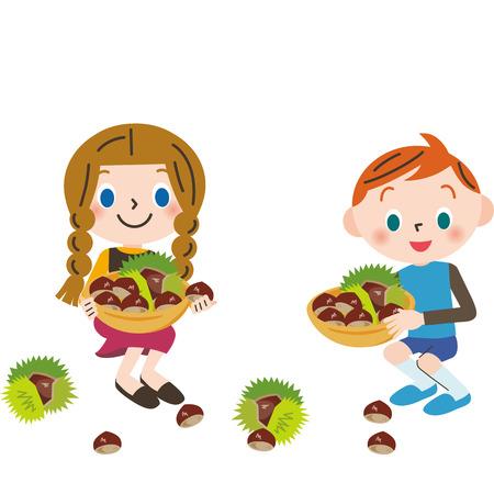 gathering: gathering chestnuts