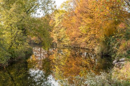 Farbiger Herbstlaub auf den Bäumen durch den See