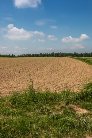 Green fields and brown soil