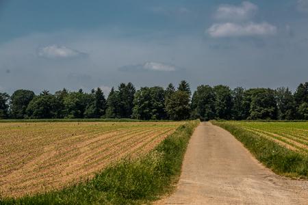 Green fields and soil Lizenzfreie Bilder