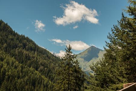 Berge und große Wälder Standard-Bild