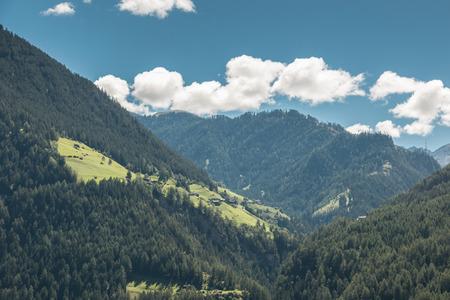 Berge und Wald Lizenzfreie Bilder