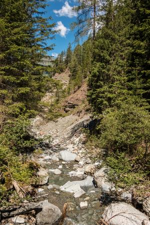 Wildbach, Wald und Berge Standard-Bild