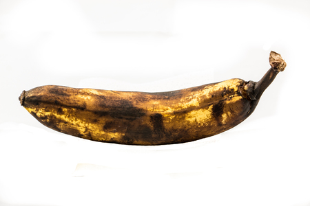 One older brown banana with white background