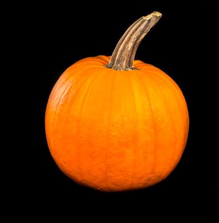 Big orange pumpkin and black background