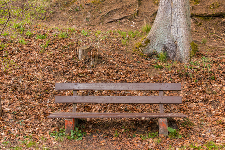 Bench near the lake to take a rest