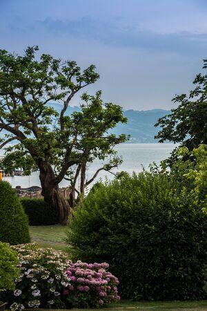Heavenly little garden near by the lake Stock Photo