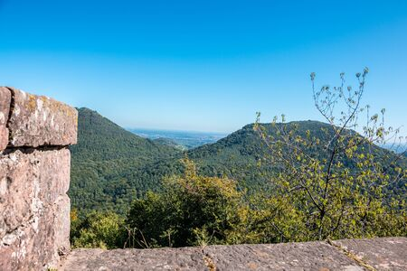 Grands murs d'un château en grès avec une large vue au-dessus de la forêt Banque d'images