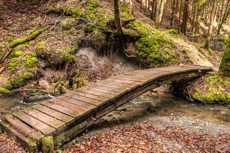 Little bridge across the creek down the canyon in the middle of the green forest
