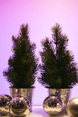 decora: a close up of two christmas trees Stock Photo