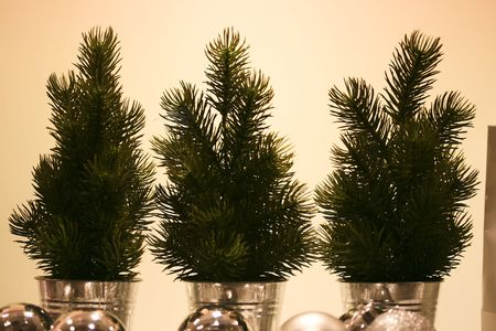 decora: a close up of three litttle christmas trees
