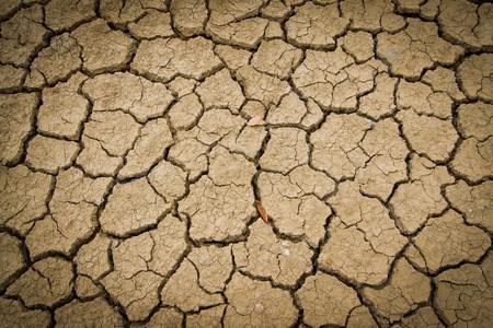 splitting up: Crack soil