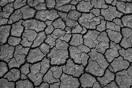 black and white Cracked soil of desert