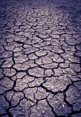 split tone Cracked soil of desert  photo