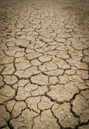 Dry and cracked earth background  Stock Photo - 10684105