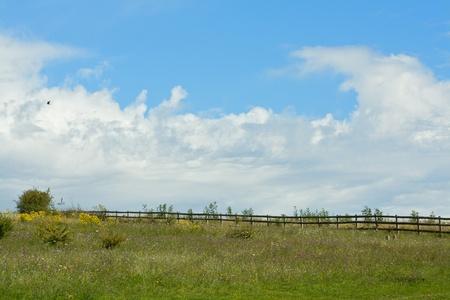 English countryside Stock Photo - 10385611