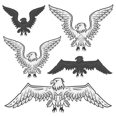 black flag: Set of eagle for emblem and design tattoo, labels Illustration