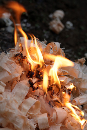 cuttings: Wood shavings burning (fire)