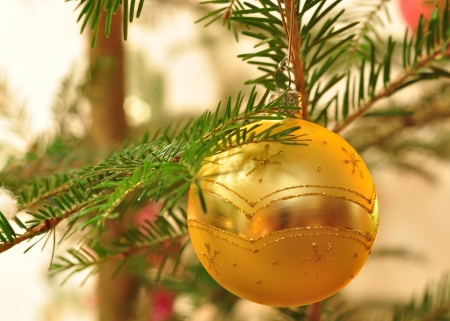 Branch of Christmas tree with golden ball with bokeh photo