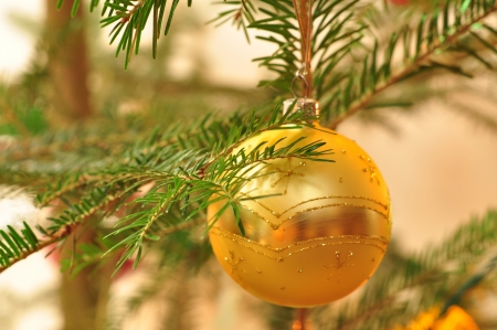 Branch of New Year tree with golden ball with bokeh photo