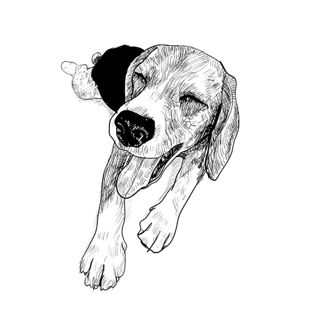 companions: Beagle is resting and her face is smiling Illustration