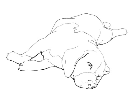 short haired: Beagle is laying down and almost fallen asleep  Illustration