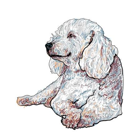 lap dog: Barboncino recante felicemente e sorridente Vettoriali