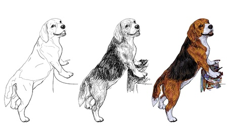 Beagle using front leg standing on a log Illustration