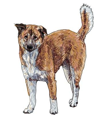 stray: The vector of stray dog
