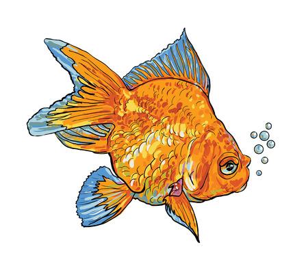 lionhead: Swimmimg goldfish with bubble